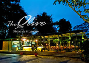 Olive_01