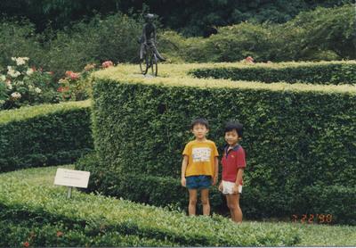 19906