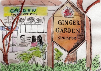 Gingergardensketch