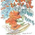 African_tulip